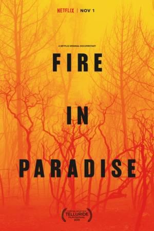 Pożar w raju