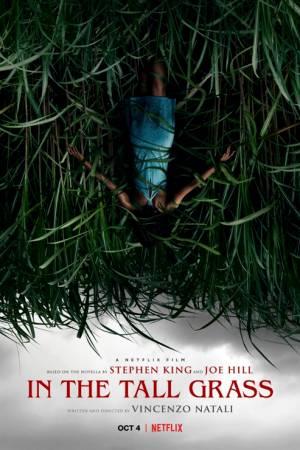 Film W wysokiej trawie online